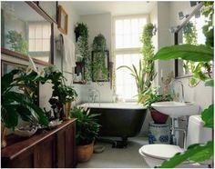 design-tricks-plants-in-the-house-pinterest1.jpg 604×477 pikseliä