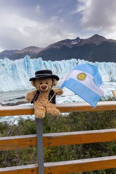 Teddy Bear Pictures, Cute Bears, Christmas Carol, Teddybear, Emoji, Diana, Beautiful, Travelling, Country