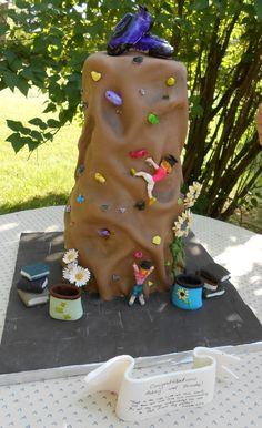 Rock climbing cake. Everything on this cake is edible.
