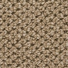 stairs  West View - Color Bandstand Loop 12 ft. Carpet-H5804-1780-1200 - The Home Depot