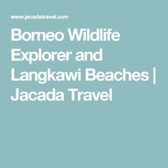 Borneo Wildlife Explorer and Langkawi Beaches | Jacada Travel