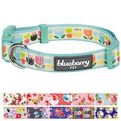 "Blueberry Pet 11 Patterns Spring Multicolor Tulip Floral Print Dog Collar in Pastel Blue, Medium, Neck 14.5""-20"", Adjustable Collars for Dogs  Neck 14.5""-20"", Width 3/4"", Size Medium; The collar does not stretch itself, please make sure leave ONLY 2 fingers between collar and dog neck. A properly fitting collar and harness won't leave any room for your dog to chew.  The collar is not for tie out. NEVER leave your dog unattended with a collar on.  Made of high density polyester webbing ..."