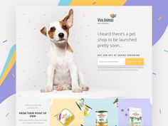 Pets Landing Page Templates Templatemonster - Best Specialty Pages At Templatemonster Com Now You Wont Need To Hire Professional Developers To Design And Create Specialty Pages Like Coming Soon Etc Pet Shop Landing Page Themes Pet Websites, Shopping Websites, Discount Pet Supplies, Online Pet Supplies, Web Layout, Layout Design, Pet Branding, Online Pet Store, Newsletter Design