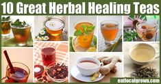 There are many different herbs from around the world that have wonderful healing properties. Here's 10 herbal teas that are easy to get and store. And you may be able grow most of them at home!