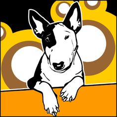 Bulli 3 - Bullterrier Monokel Hund 3 Retro Bilder Foto Tierbilder Poster Bild | eBay