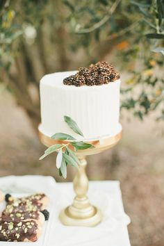An Olive Orchard Photoshoot for Project Wedding | bearflagfarm.com