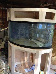 92 Gallon Corner Aquarium Stand and Canopy Corner Aquarium, Aquarium Hood, Diy Aquarium Stand, Saltwater Aquarium Setup, Turtle Aquarium, Tropical Aquarium, Planted Aquarium, Aquarium Fish, Reptile Terrarium