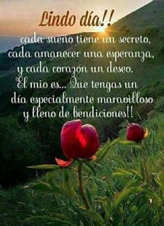 Frases de Buenos Dias 776 - Sun Tutorial and Ideas Good Day Quotes, Morning Love Quotes, Morning Greetings Quotes, Good Morning Messages, Good Morning Good Night, Night Quotes, Morning Wish, Quote Of The Day, Morning Images