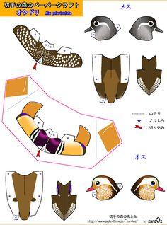 Mandarin duck  Aix galericulata  Mandarin Duck