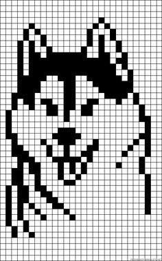 Dog husky perler bead pattern