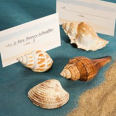 100 Beach Theme Sea Shell Design Place Card Holders! $89.99