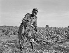 sharecroppers   Thirteen-year old sharecropper boy near Americus, Georgia, 1937