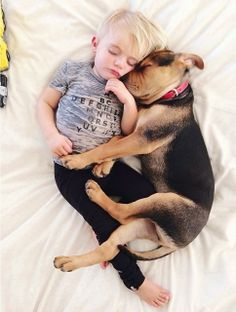 Months Later This Toddler Is Still Napping With His Puppy Dog - Toddler naps with puppy