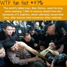 The tallest man in the world, Bao Xishun saves dolphin's life - WTF fun facts