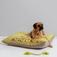 Deny Designs Happee Monkee You are My Sunshine Pet Bed 40 by 30Inch -- Details can be found by clicking on the image.-It is an affiliate link to Amazon. #DogBedsFurniture