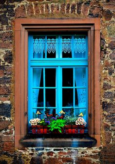 blue-curtained window (by Adriana Guerrero)