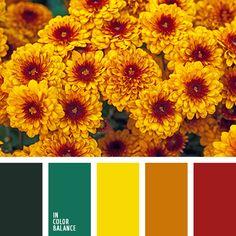 color palettes - color schemes