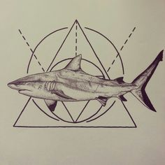 cool idea for a shark tattoo