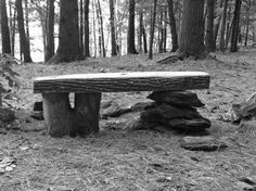 Tree Slab and Stone Bench + Other Improvs at Camp - Improvised Life