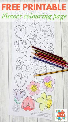 Beautiful Free Flower Colouring Page For Adults Perfect Making Bunting Or Joining The