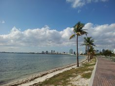 """See 808 photos from 5055 visitors about beach, casual, and biking. """"Rode my bike over the Key Biscayne Bridge. Great ride, beach it never too crowded. Places Around The World, Around The Worlds, Crandon Park, Key Biscayne, Florida Travel, Vacations, Keys, Miami, Paradise"""