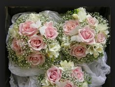 Rose and gypsophila Bouquet