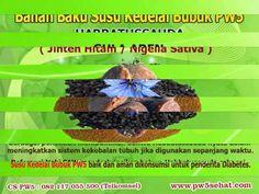 Jual Susu Kedelai Bubuk Di Jakarta, Jual Susu Kedelai Murah   Dapatkan segera Susu Kedelai Bubuk PW5 di APOTEK, TOKO OBAT dan RUMAH HERBAL terdekat dikota anda.  Info lebih Lanjut Hubungi :  Customer Service PW5 Tlp/SMS : 082 117 055 500 (Telkomsel) Email   : cs@pw5sehat.com Website : http://goo.gl/we8zrH Info Lengkap: http://bit.ly/1J19fpa