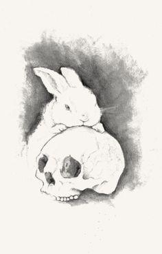 #skull #rabbit #illustration