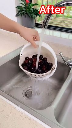 Never drop another freshly washed fruit or vegetable in the sink again! Best tools to buy right now. Kitchen tips and tricks. #fruit #vegetables