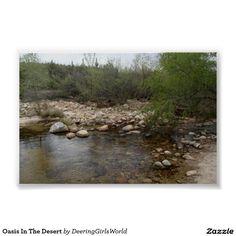 Oasis In The Desert Poster