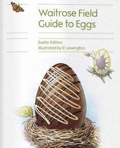 70 Some Easter Ideas Easter Fluffy Bunny Egg Hunt
