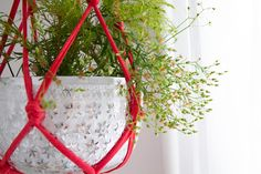 DIY : une suspension pour des plantes