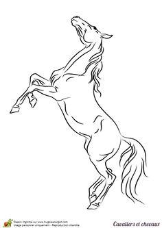 dessin de tête de cheval à colorier image 1113 dessin alexia