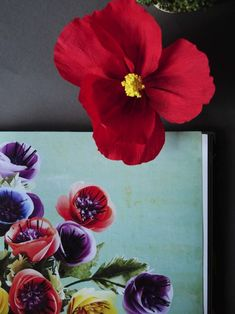 Resultado de imagen para flores hawaianas de papel