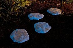Create your own stepping stones that glow in the dark!