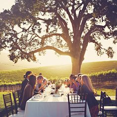I love the outdoor picnic table idea, maybe for engagement party as well.