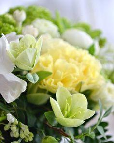 Torstai on toivoa täynnä!Have a happy Thursday! #kevät #kukat #leikkokukat #kukkailoa #spring #springfeeling #flowers #flowerpower #flowerlovers  #flowerbouquet #vår #vårkänsla #blommor #blomster #nordicgardenbloggers