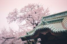 https://flic.kr/p/e6YHVN | Spring colors