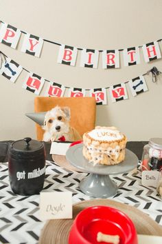Doggy Birthday Party! This whole party was For Dogs! Lots of Fun Ideas via Kara's Party Ideas | KarasPartyIdeas.com #DogBirthdayParty #DogParty #PartyIdeas