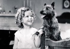 Shirley Temple with Terry (Toto) the cairn terrier
