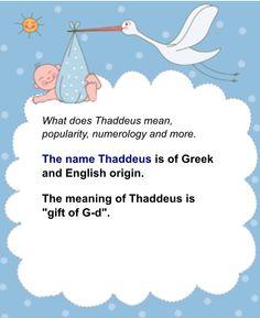 Thaddeus name meaning