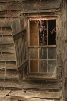 My father's mother taught me to find beauty in old buildings, what history have these old boards and glass panes seen