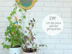 DIY un tipi pour plantes grimpantes - Mon carnet déco, DIY, organisation, idées rangement.