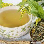 plantas medicinales para bajar de peso