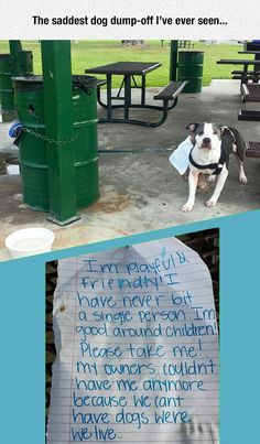 Re-pin if you are against Breed Specific Legislation. Then sign a petition someplace to prevent new laws and to repeal existing ones.