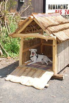 1000+ images about Dog Houses on Pinterest | Dog houses ...