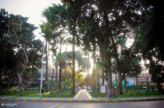 Mustafa Kamel square #maadi #cairo #egypt