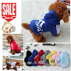 Cheap dog clothes, Buy Quality clothes for small dog directly from China clothing for dog Suppliers: Autumn Winter Pet Products Dog Clothes for small dogs Pets Coats Soft Cotton Puppy Dog Clothing For Dog Chihuahua Chien Doges Big Dogs, Dogs And Puppies, Large Dogs, Small Dogs, Pet Online, Pet Coats, Vetement Fashion, Winter Hoodies, Puppy Clothes