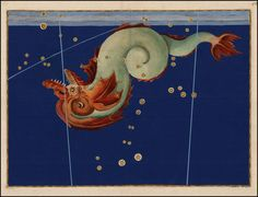 Piscis Notius from Rare Book: Johann Bayer's Celestial Atlas, Augsburg / 1603
