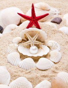 Pearl on the seashell . The exotic sea ... | Stock image | Colourbox